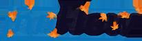 InnFlow Sp. z o. o. Logo